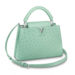 Louis Vuitton Mint Green Capucines BB in Ostrich Leather
