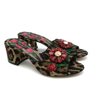 Dolce & Gabbana Leopard Print Crystal Embellished Mules