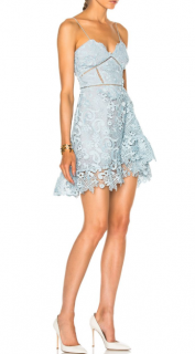 Self-Portrait Blue Paisley Vine Mini Dress