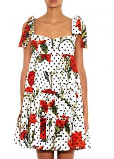 Dolce & Gabbana Carnation And Polka-Dot Print Dress