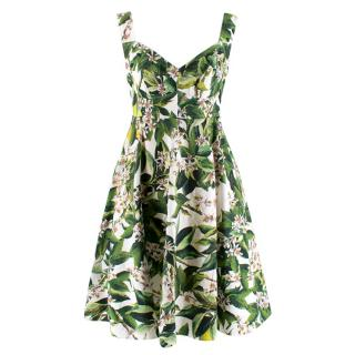 Dolce & Gabbana Green & White Floral Print Fit & Flare Dress