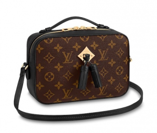 Louis Vuitton Monogram Saintonge Shoulder Bag