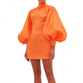 Elzinga Tangerine Balloon-sleeve silk-organza mini dress