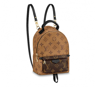 Louis Vuitton Reverse Monogram Mini Palm Springs Backpack