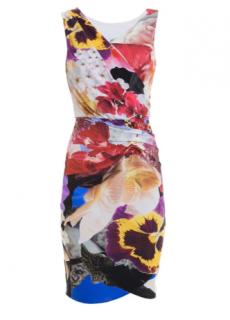 Roberto Cavalli Araki Printed Sheath Dress