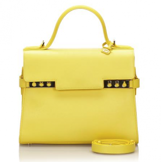 Delvaux Yellow Leather Medium Tempete Bag