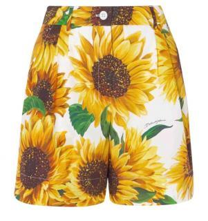 Dolce & Gabbana Sunflower Print Tailored Shorts