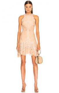 Jonathan Simkhai Nude Metallic Mini Dress