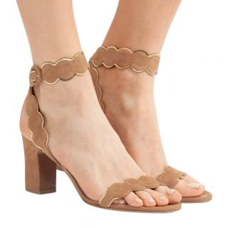 Tabitha Simmons Cloud Metallic Leather-trimmed Suede Sandals