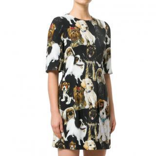 Dolce & Gabbana Dog Print Crepe Dress