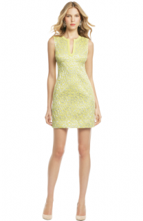 Diane von Furstenberg Leopard Print Sandine Dress