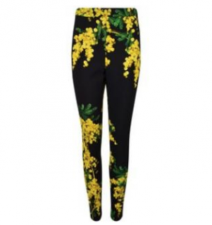 Dolce & Gabbana mimosa printed fitted trousers