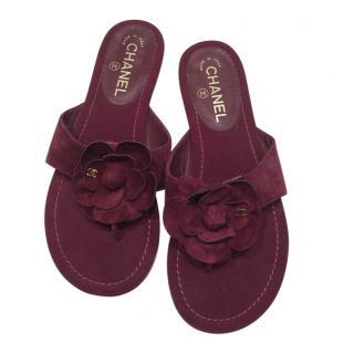 Chanel Suede Burgundy Camellia Sandals