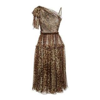 Dolce & Gabbana Leopard Print Chiffon One-Shoulder Dress