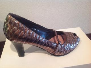Mascaro silver and copper snake pump