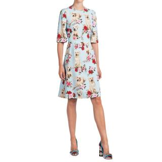 Dolce & Gabbana Blue Labrador Print Silk Dress