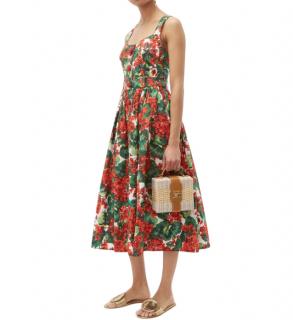 Dolce & Gabbana Geranium Print Dress