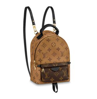 Louis Vuitton Monogram Reverse Palm Springs Mini Backpack