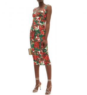 Dolce & Gabbana Geranium-print pannelled midi dress
