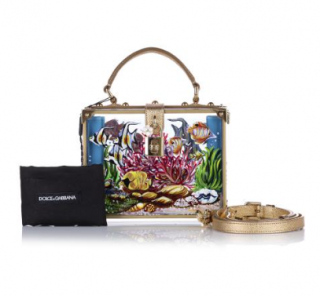 Dolce & Gabbana Aquarium Leather Trim Plexi Box Bag