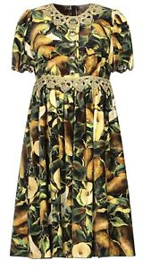 Dolce & Gabbana Velvet Brocade Pear Print Dress