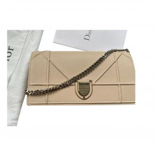 Dior Rose Poudre Diorama Wallet on Chain