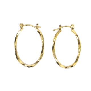 Gold Colour Oval Earrings