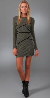 Preen By Thorton Bregazzi  Runway Moss Lace Chelsea Dress