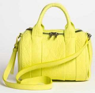 Alexander Wang Rockie bag never worn