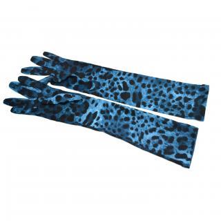 Dolce & Gabbana virgin wool gloves