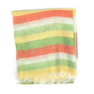 Etro Multi-Coloured Striped Scarf