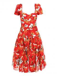 Dolce & Gabbana Tomato Print Bustier Dress