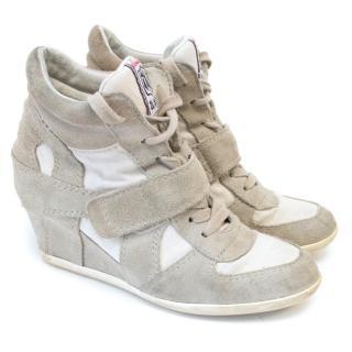 Ash Suede Sneaker Wedges