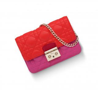 Miss Dior Promenade pouch