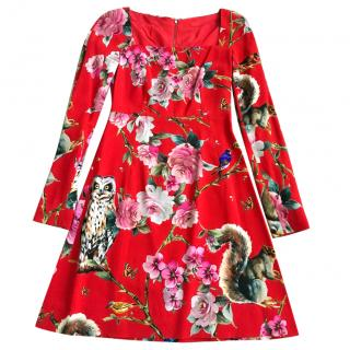 Dolce & Gabbana Floral Printed Cady Dress